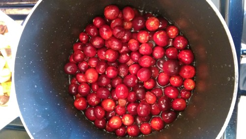 Cranberries close-up using HTC One