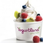 Yogurtland CEO Shares Secrets of His Entrepreneurial Success