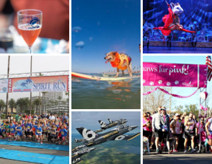 Collage of Events, Wine Glass, Dog on Surf Board, Ballet Mouse, Nutcracker, Spirit Run marathon, Paws Fur Pink starting line race